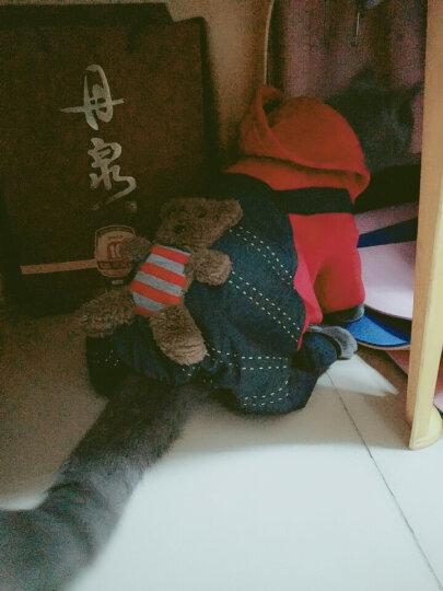 Mr.Bear/宠宠熊 狗狗衣服 小熊图案四脚服-红:6号 泰迪衣服秋冬装小狗宠物贵宾四脚衣服 晒单图