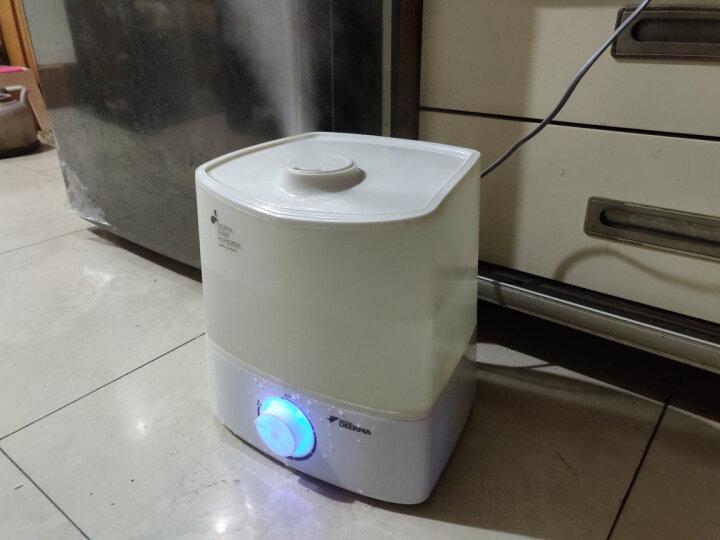 德尔玛(Deerma)加湿器 4.5L大容量 净水滤芯 静音迷你办公室卧室家用香薰加湿 LU100 晒单图