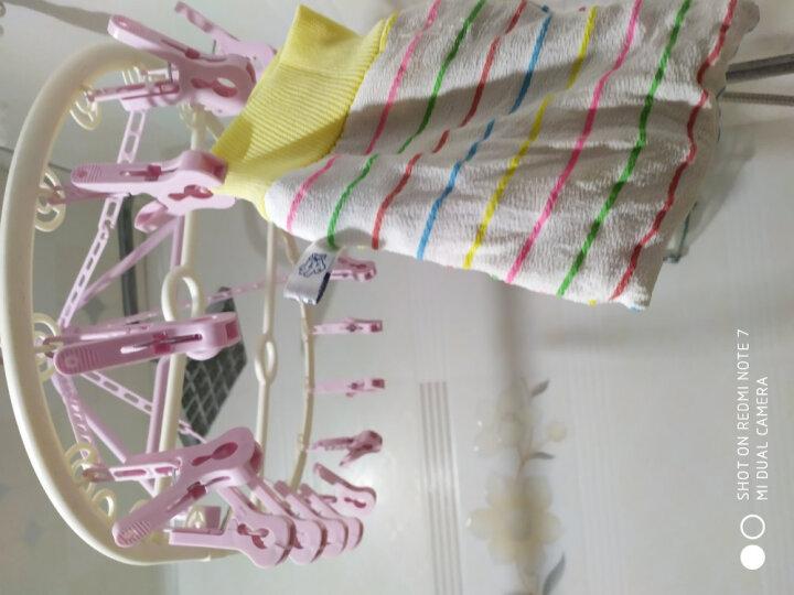 乾越(qianyue)多功能晾衣夹 衣架 18夹晾衣夹子 内衣内裤袜子儿童防风圆盘晾衣架 可折叠 双挂钩设计 粉色 晒单图