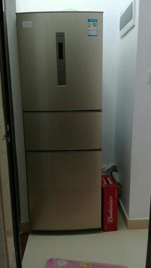 松下(Panasonic) 280升三门变频风冷无霜冰箱自由变温室-3℃微冻保鲜 NR-C280WP-NA典雅金 晒单图
