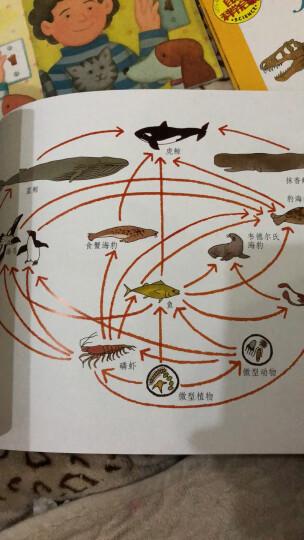 自然科学启蒙(第十四辑)(启发童书馆出品) 晒单图