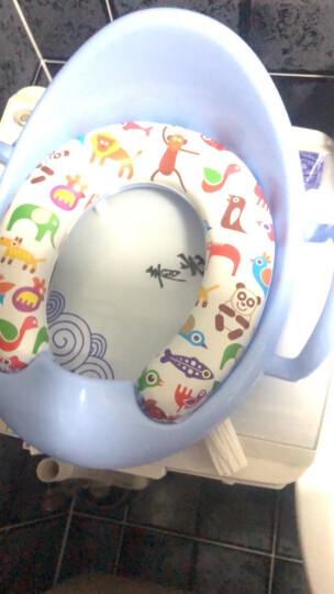 七彩宝贝(QCBABY) 儿童马桶圈坐便器男女宝宝马桶垫 婴儿坐便圈尿盆便盆 蓝色 晒单图