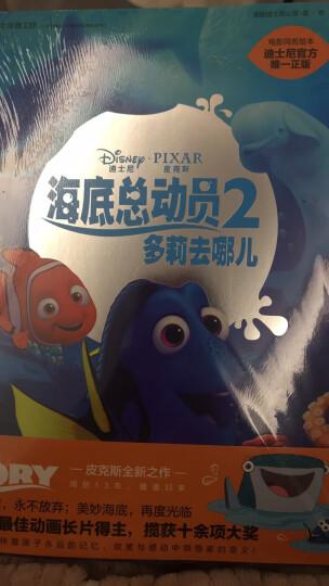 迪士尼动画电影海底总动员2·多莉去哪儿系列 多莉到你了 专注力训练绘本 晒单图