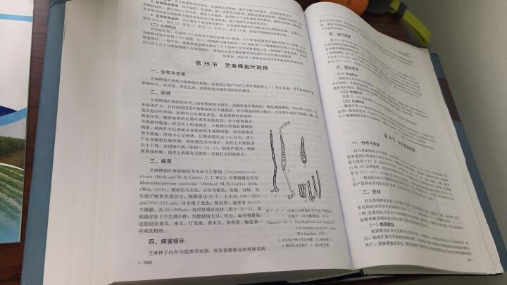 中国农作物病虫害(中册 第三版) 晒单图