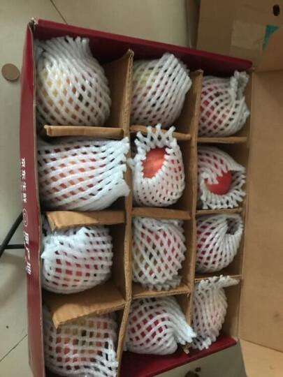 潘苹果 甘肃天水红富士苹果 12个 1.85kg单果约125-175g  一二级混装 自营水果 晒单图
