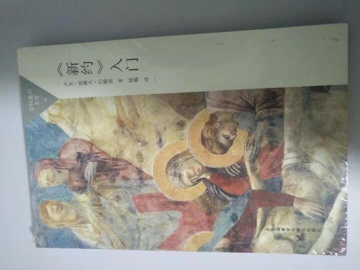 <新约>入门(百科通识文库) 晒单图