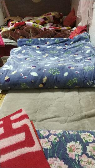北极绒  枕头枕芯 单/双人磁石枕 酒店护颈椎枕 篮网决明子48*74cm 一只装 晒单图
