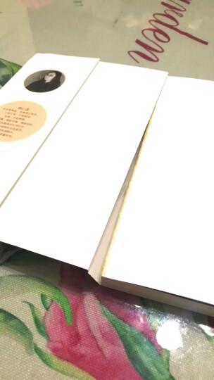 静心烘焙 幸福甜点+玩美面包 全2册 新手自学烘培制作入门教程书籍 烤箱食谱 蛋糕饼干西点 晒单图
