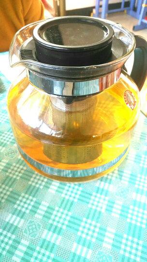 紫丁香 玻璃茶壶 大容量304不锈钢内胆加厚耐热 双环扣手柄泡茶壶办公茶具2200ml S863-1 晒单图