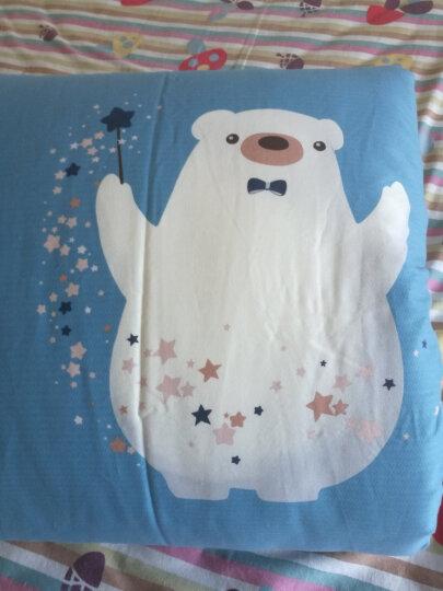 南极人NanJiren 被子 新疆棉花被 双人加厚棉被春秋被芯 5斤 2*2.3m 冬季被褥棉花胎棉絮 晒单图