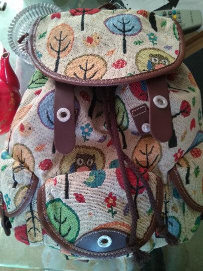 豆鼓眼(DouGuYan)韩版双肩包女休闲帆布学院风背包女旅行书包G00113 125花色升级版 晒单图