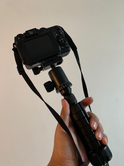 思锐(SIRUI)三脚架 3T-35K反折单反相机桌面脚架 迷你便携 微单通用 黑色 晒单图