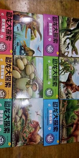 新课标小学语文阅读丛书世界100个文明奇迹彩绘注音版 儿童文学名著故事 晒单图
