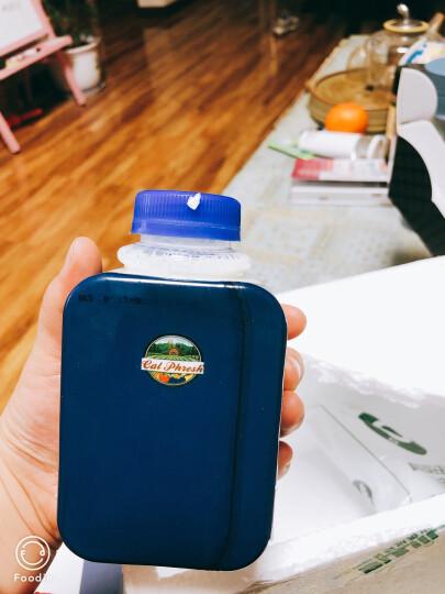 美国进口牛奶 卡富芮氏 巴氏杀菌低温奶全脂鲜牛奶 适用成人儿童孕妇 富含维生素D营养纯牛奶 1L*2瓶 晒单图