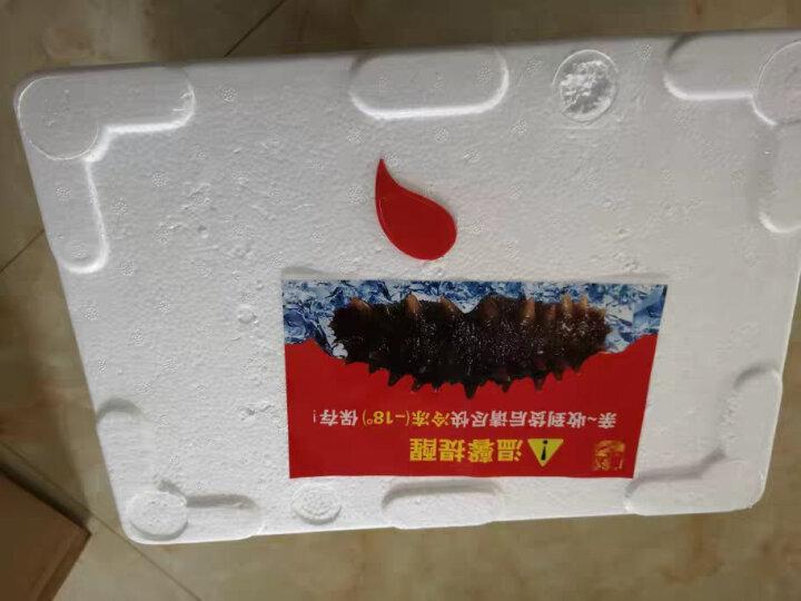 广参堂 大连深海冷冻即食海参年货 辽刺参 500g-10头 晒单图