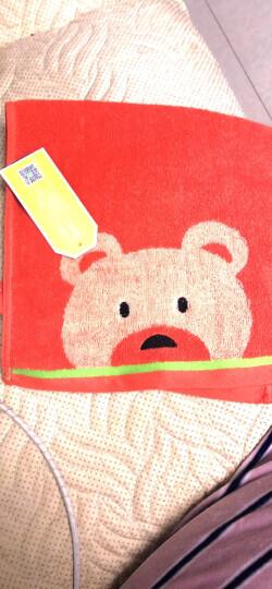 三利 纯棉卡通儿童毛巾6条 猫咪+小熊洗脸面巾 25x50cm 独立包装 晒单图