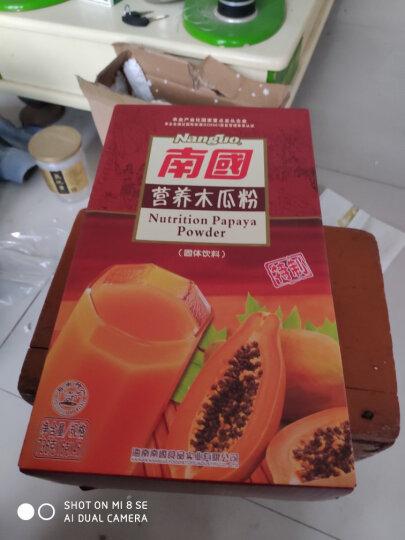 南国 木瓜粉736g 海南特产青木瓜粉 代餐粉冲饮粉 晒单图