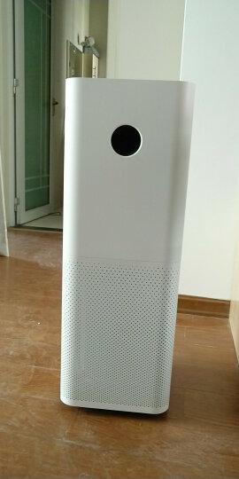 小米(MI)空气净化器pro家用智能除霾除尘除颗粒物净化器 小米空气净化器Pro+经济版滤芯 晒单图