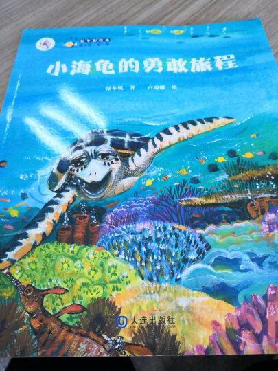 保冬妮原创绘本海洋馆·第1季:小海龟的勇敢旅程 晒单图