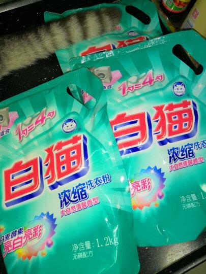 白猫新浓缩洗衣粉(丹麦进口生物酵素)1200g*3袋 晒单图