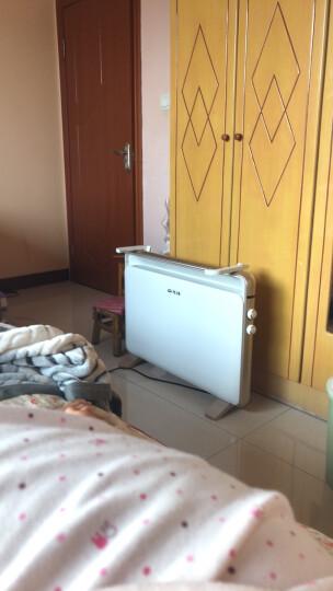 先锋 新款宁波取暖器电暖器家用静音节能省电暖炉快热炉暖风机婴儿宝宝浴室用防水取暖气烤火炉 白色 晒单图