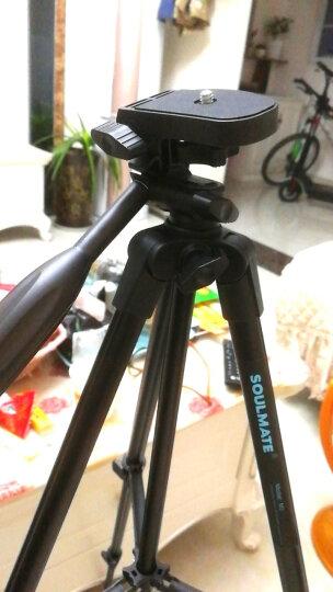 佳能(Canon)EOS M6 微单相机 微型可换镜数码相机 单机身照相机 EF-M 15-45mm镜头套机黑色 套餐二 晒单图