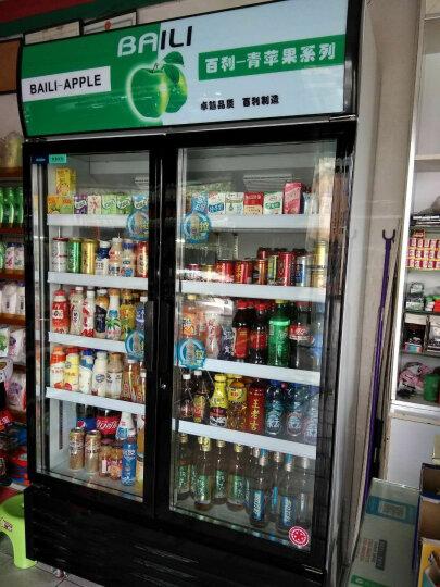 百利(BAILI) 818升商用冰柜冰箱双门展示柜保鲜柜立式商用冷藏饮料柜冷柜 LC-818M2AF 晒单图