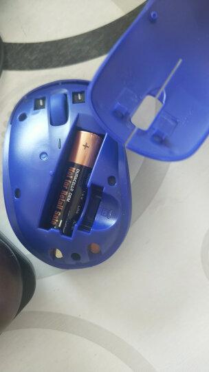 戴尔(DELL)USB有线/无线/蓝牙/折叠/6键鼠标可选 家用游戏办公 MS116 USB有线鼠标 黑色 晒单图