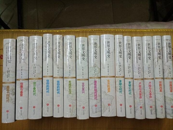 世界佛教通史·第八卷:中国南传佛教(从佛教传入至公元20世纪)) 晒单图