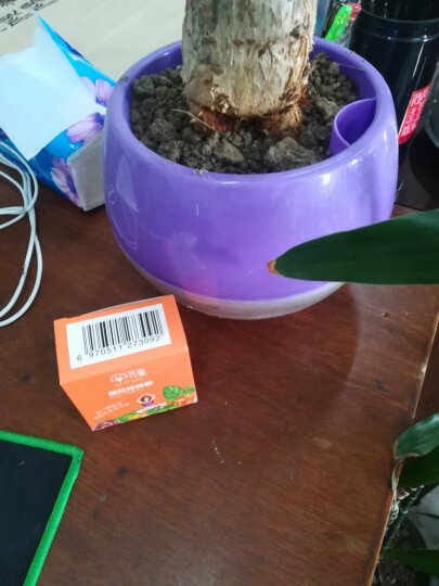 花童 颗粒缓控释肥料 观花型园艺花肥料复合肥 盆栽花卉植物肥料 100g/盒 晒单图
