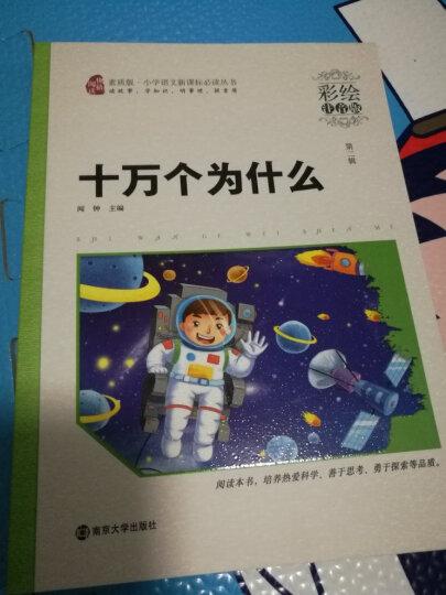 中外名人故事(彩绘注音版),智慧熊图书 晒单图