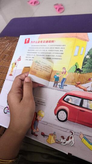 德国少年儿童百科知识全书:什么是什么(第一辑平装美惠版 套装共20册) 晒单图