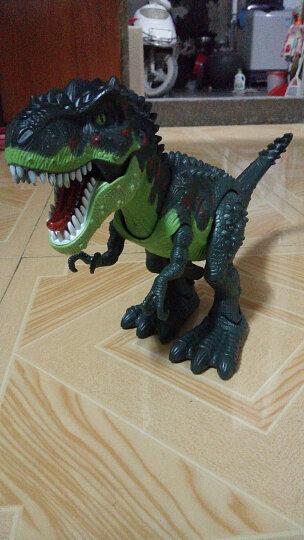 融凯仿真恐龙玩具 大号霸王龙 声光电动玩具 可动的暴龙恐龙世纪 动物玩具模型 男孩儿童玩具 青色霸王龙 晒单图