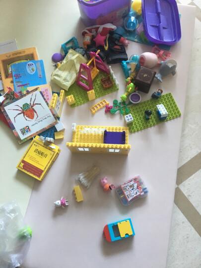 小猪佩奇兼容乐高积木玩具益智拼装塑料大颗粒积木拼插组装男女孩子的儿童节礼物快乐 A06030游乐场里荡秋千 晒单图
