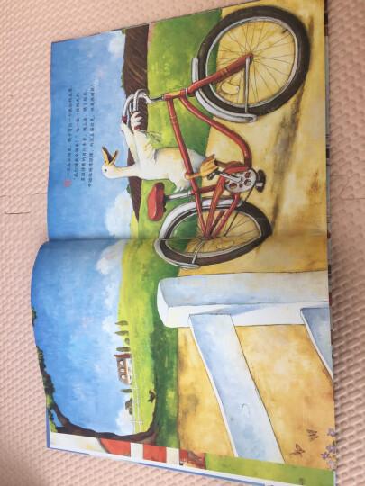 鸭子骑车记(新版) (爱心树童书) 晒单图