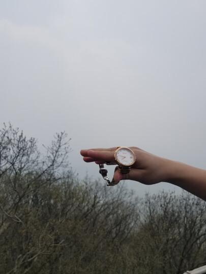 瑞贝拉(Rebela)女表 全自动机械表情侣手表时尚镶钻防水精钢女士手表腕表 清凉一夏 尚物风潮 附钻石证书-间金 晒单图