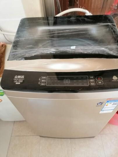 安美饰 全自动波轮洗衣机罩套 XB552XXL 波轮洗衣机防水防晒防尘罩 做工精致细密/面料/拉链升级 XXL号 松鼠 晒单图