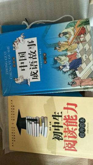 中国成语故事 知识精选大全(彩图版套装全4册 精装送手提袋) 儿童青少年小学生课外学习读物 晒单图