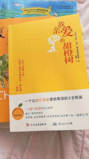 我亲爱的甜橙树  晒单图