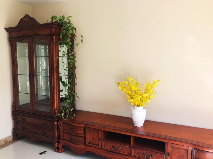 星佳巢 实木酒柜 美式客厅展示柜 玄关双门玻璃红酒柜子 可储物 晒单图