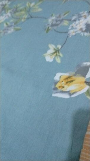 浪莎家纺 纯棉床笠单件可水洗席梦思保护套全棉防滑床罩双人床垫罩床套 随想曲 150*200cm 晒单图