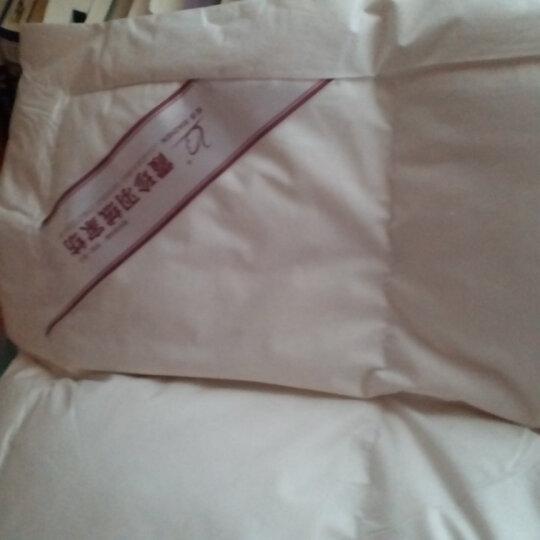 霞珍双层羽绒床垫 70%白鸭绒床褥 垫被 被褥子 加厚五星酒店榻榻米床垫子 适合床(1.0m*2m) 晒单图