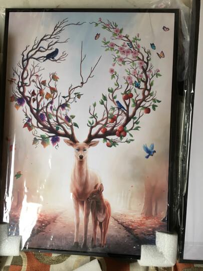 米罗映画  客厅装饰画北欧麋鹿壁画沙发背景墙三联挂画餐厅玄关卧室有框画发财鹿 吉祥福鹿(一套三幅) 50*70 黑色框 晒单图