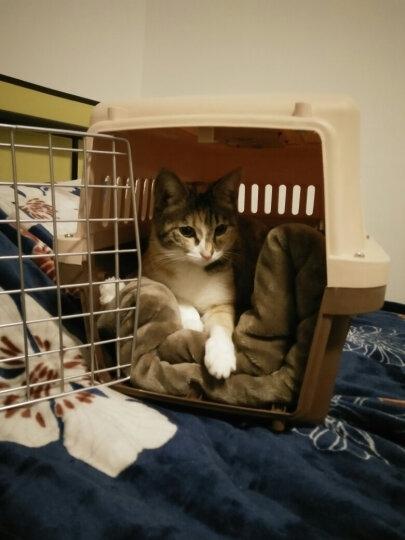 憨憨乐园 宠物航空箱狗狗猫咪外出箱子猫包托运旅行箱运输猫笼子便携咖啡色66*45*46cm(适合25斤以下宠物) 晒单图
