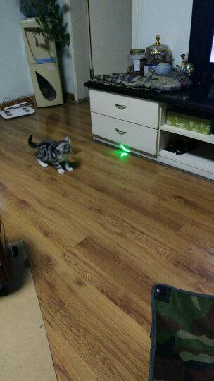 魔铁 激光笔灯手电筒 绿光强光充电防水防身远射镭射笔 红外线天文指星笔售楼部沙盘逗猫棒M308 USB直充银色绿光+送5个效果头 晒单图