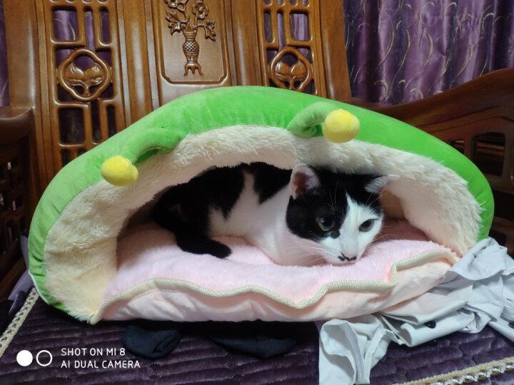 猫窝睡袋狗窝 绒域坊毛毛虫宠物窝垫泰迪宠物狗床猫咪用品帐篷拖鞋窝 奶牛毛毛虫 大号(适合8斤以上肥猫) 晒单图