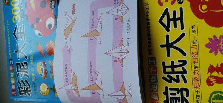 彩泥+折纸+剪纸大全300例(套装全3册)趣味手工 晒单图