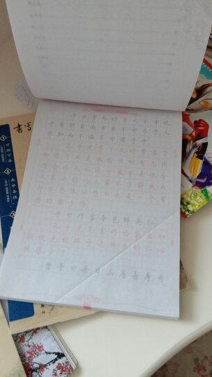 新课标小学生钢笔楷书字帖(套装共3册) 晒单图