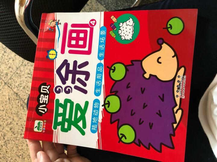 晨风童书 七彩涂色画 小宝贝爱涂画 水果蔬菜动物自然植物等(套装全4册) 晒单图