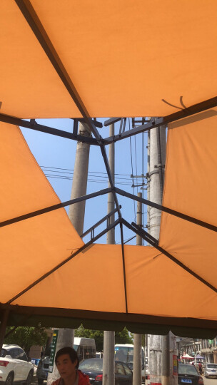 紫叶(ziye)户外遮阳棚摆摊帐篷凉亭花园庭院雨棚罗马帐篷大型广告活动帐篷 立柱加粗 升级款双边3*3《配围纱围帘》 晒单图